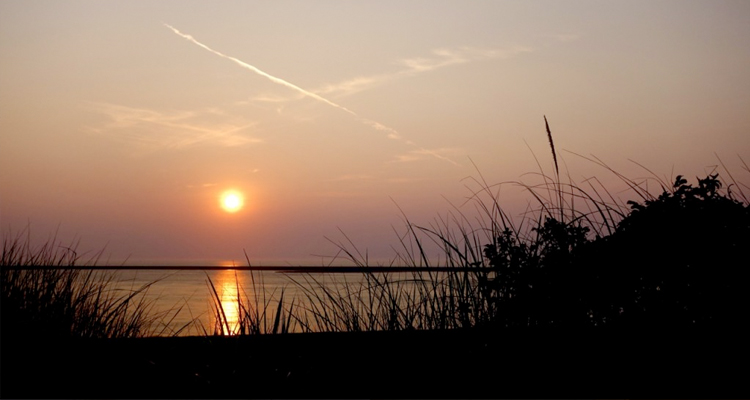 Sun setting at a Chatham beach with grass in the foreground, and calm water in the background