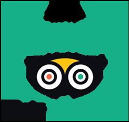 2019 Travelers' Choice Award