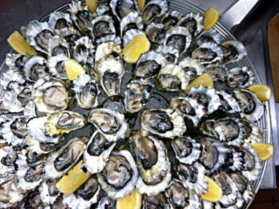 Oysters on a platter